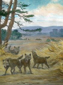 © Bildquelle: Wikipedia Gemälde: von Charles R. Knight