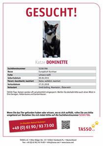 Dominette