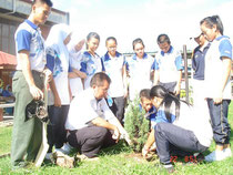 Children learn how to plant seedlings