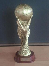 Da ist das Ding - Weltpokal 2014