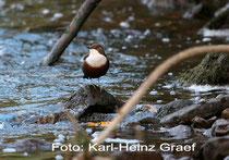 Bild: Karl-Heinz Graef