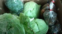 ★新鮮な野菜たち★