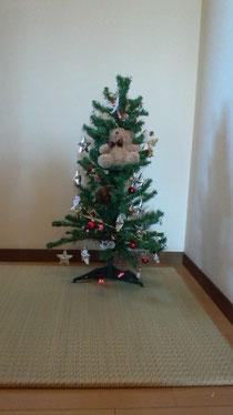フローリングに置く畳(たたみ)と クリスマスツリー☆