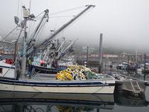 Alaska, ein Land der Fischerei