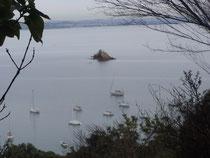 Rocky Bay auf Waiheke Island