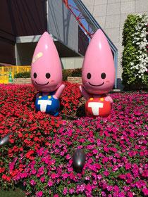 東京タワーの入り口にいました
