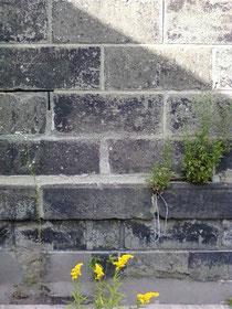 小樽、運画沿い倉庫、札幌軟石の壁