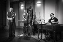 Toth Viktor Arura Trio © Emmanuelle Vial 2013