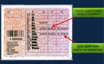 Польские права с код 95.