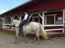 Und entdeckten unsere Liebe zum Pferd