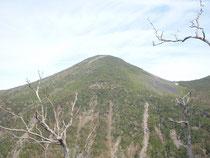 梅雨入りしていたにも関わらず北岳や甲斐駒ケ岳を擁する南アルプス、それに目の前に聳える八ヶ岳南陵の編笠岳と権現岳には雲ひとつなく、雪を頂く富士山ともどもすばらしい眺望をプレゼントしてくれた。