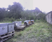 Hivernage près de Belley
