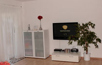 living room and TV place 42 `` cable internat. TV