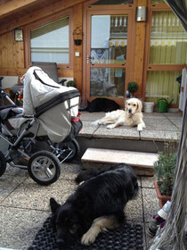 mein Baby Security-Team ;-)