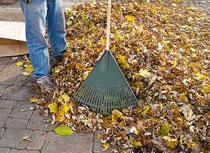 Gartenpflege - Paket small