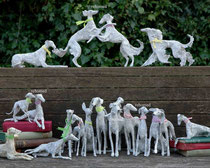 Windhundgruppe Corrigan