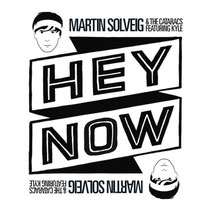Martin Solveig | Hey Now