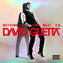 David Guetta | Nothing But The Beat 2