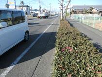 自転車道の段差