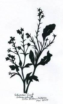 Schwarzer Senf