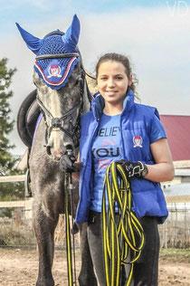 Общение с лошадьми