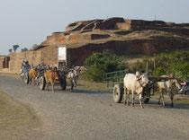 祇園精舎のある舎衛城郊外をゆっくり進む牛車の列