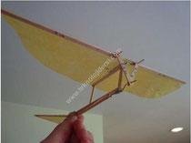 ornithopter yapımı