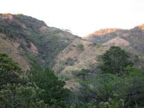 Vue de la montagne où est produit le café