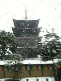 京都の東寺です。