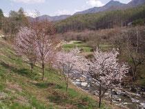 桃源郷のような山里の春