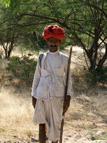 Hirte Indien - Halbwüste