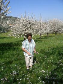 An einem jungen Frühlingstag...