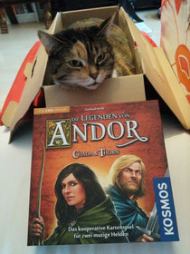 Brettspiel Rezension: Andor Chada & Thorn