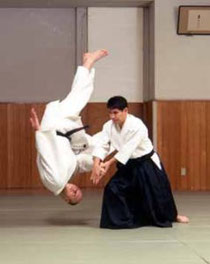 Aikido Photo
