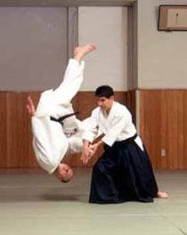Aikido Photo