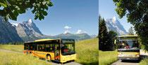 Linienbetrieb Sommer >>> anklicken