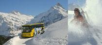Linienbetrieb Winter >>> anklicken