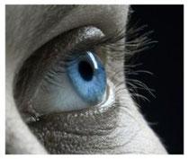 Différences entre Sophrologie et relaxation, hypnose, mindfulness à l'école de Sophrologie Caycédienne à Liège en Belgique