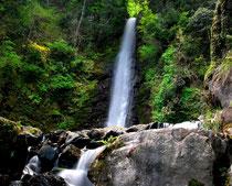 名滝100選、養老の滝 フォトBy白鳥保美