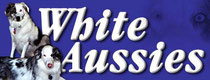 White Aussie Project