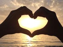 Herzensweg Healing Code