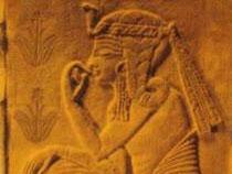 Aloé vera santé | Gravure égyptienne, avec des plantes Aloès