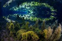 白川水源 水中撮影