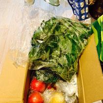 母お手製、有機野菜☺️
