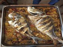Alquiler de vacaciones en cala Llevado - Pescado al horno