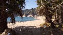 Playa grande de Santa María de Llorell