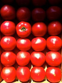 王様トマト