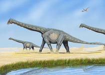 Bild eines Alamosaurus