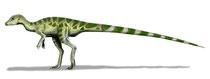 Bild einer Leaellynasaura