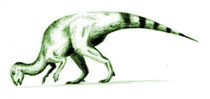 Bild eines Hysilophodon